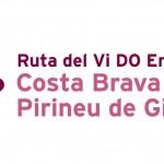 ruta_vi_logo_RGB