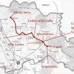 Curs de tast de vins i olis en ruta per la DO Empordà
