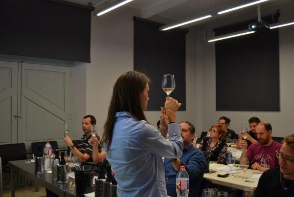 Curs de tast vins Cervera