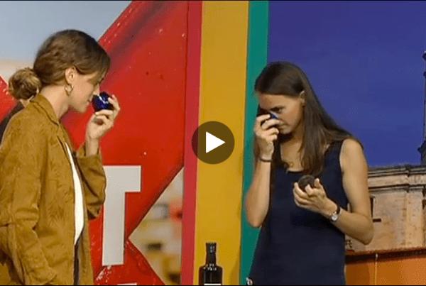 Com fer un tast d'olis d'oliva - Te de tot TV Girona