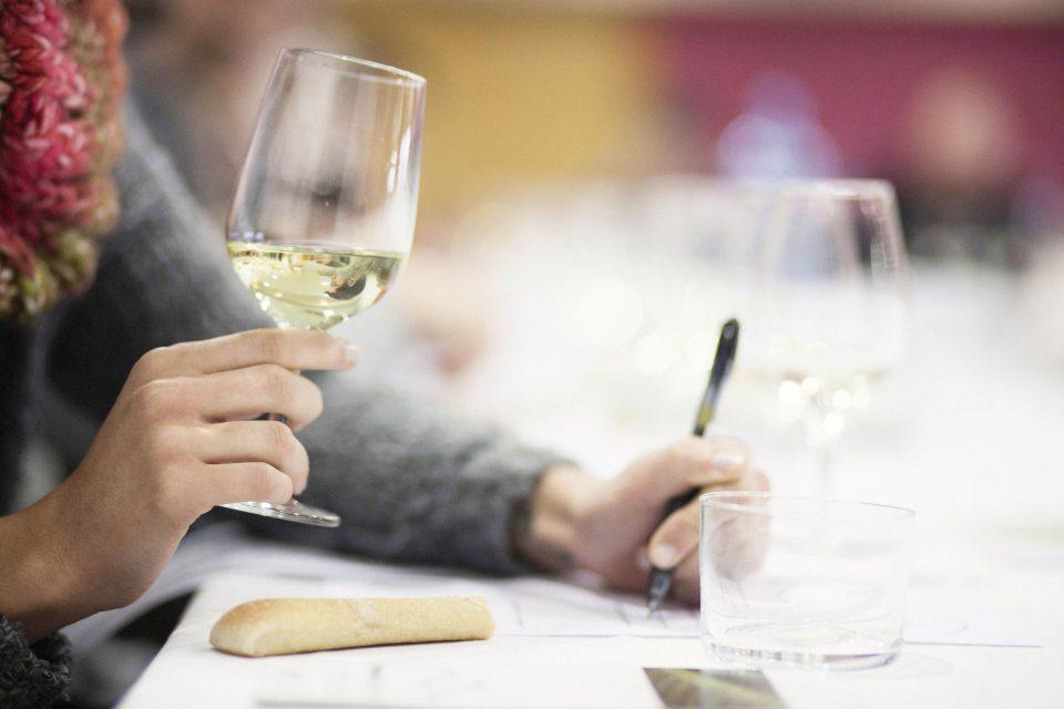 Cursos de tast de vins