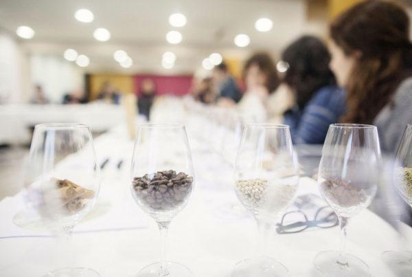 Curs de tast de vins