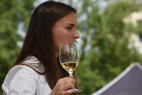 Tast de vins a l'aire lliure